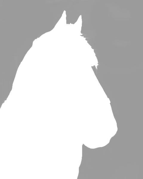 Horseholder